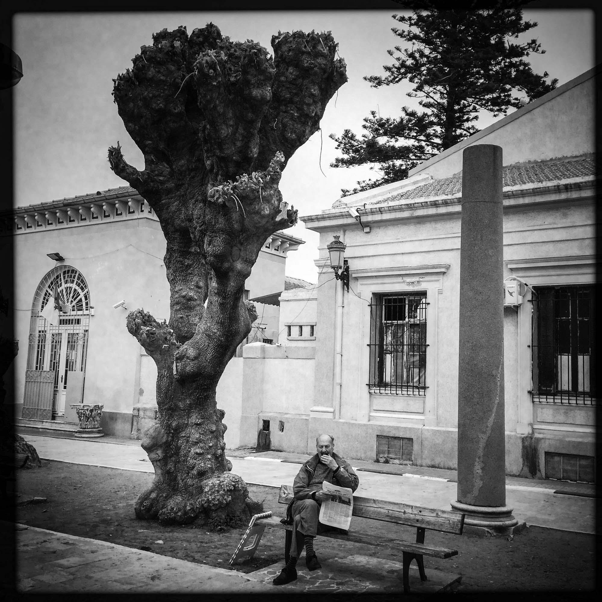 Un homme assis sur un banc  dans un jardin ou l'on retrouve des vestiges Romains baille. 11/02/2016, Cherchell-ALGERIE.