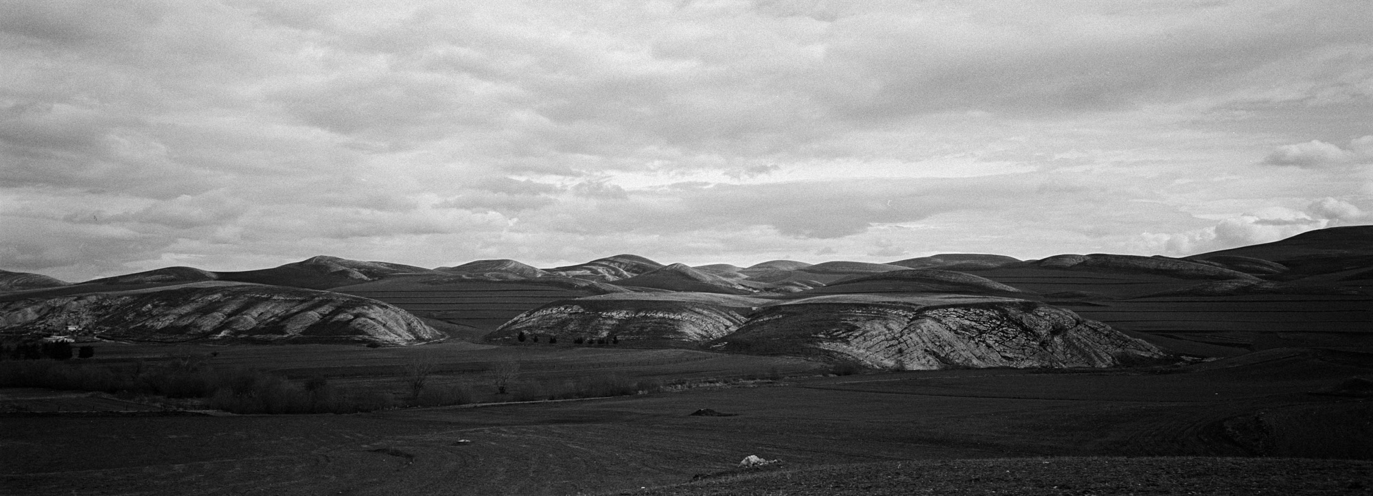 Paysage de la campagne près de Guelma. 10/02/2016-ALGERIE.